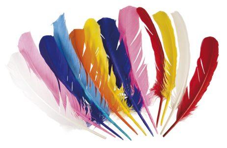 12 plumes colorées