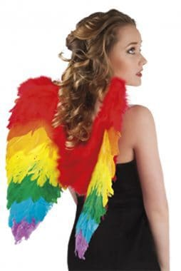 ailes arc en ciel plumes