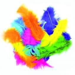 Sachet de 100 plumes mutlicolores