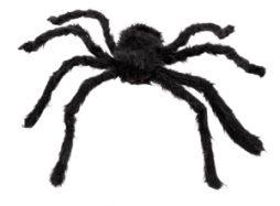 Araignee velue de poils noirs 70 cm
