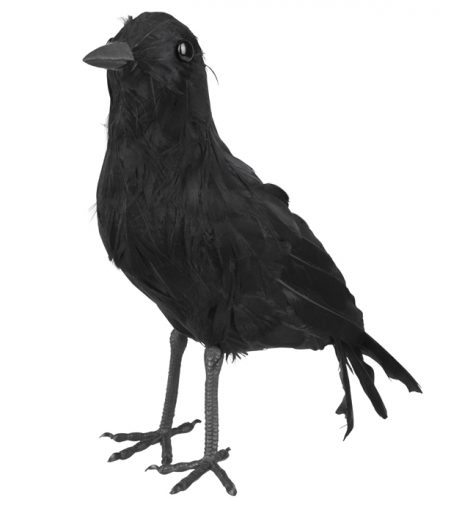Corbeau noir 23 x 10 cm