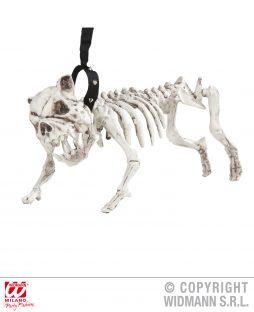 Chien squelette halloween