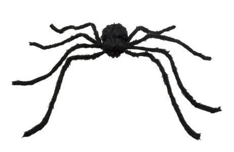 Araignee géante 75 x 125 cm