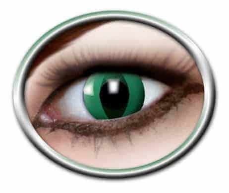 Lentilles yeux verts chat