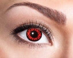 Beauty female blue eye with curl long false eyelashes - macro shot over white background