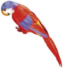 Perroquet déco 40 cm