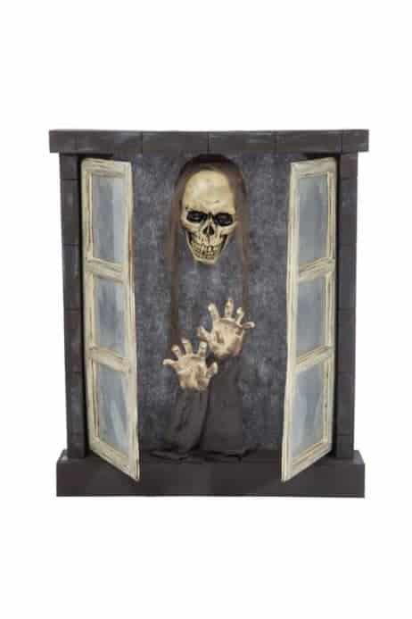 Fenêtre Squelette animée