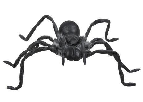 Araignee géante noire
