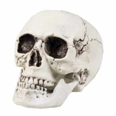 Tete de mort 20 x 15 cm