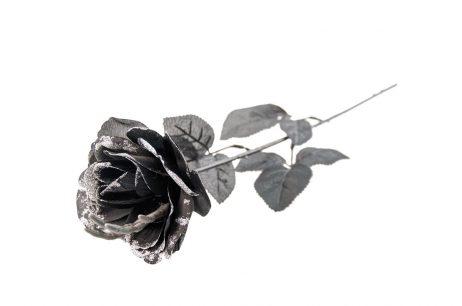 Rose noire gothique
