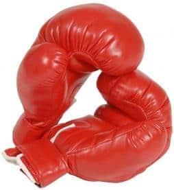 Gants de boxe adulte