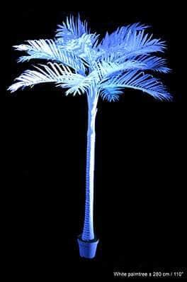 Palmier blanc 280 cm