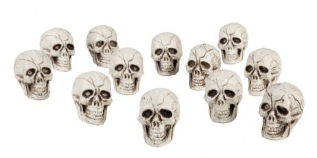 mini cranes de squelette