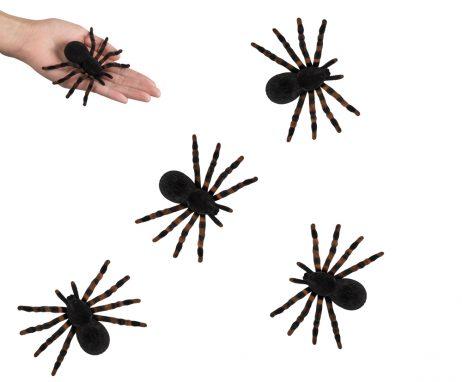 Blister 4 araignees