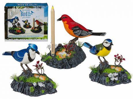 socle crayon oiseau chanteur