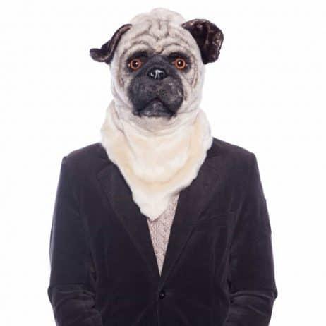 Masque de bulldog réaliste