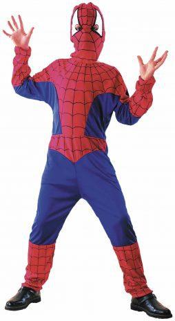 Déguisement l'homme araignée