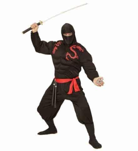 Costume super ninja