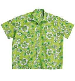 Chemise hawaienne verte