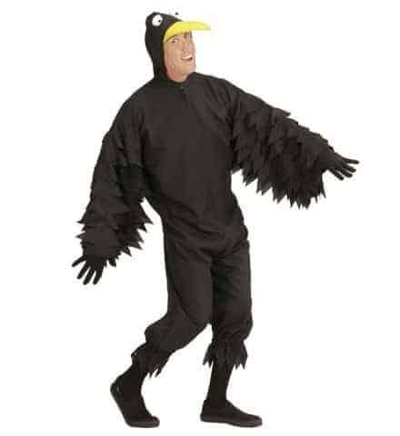 Déguisement de corbeau
