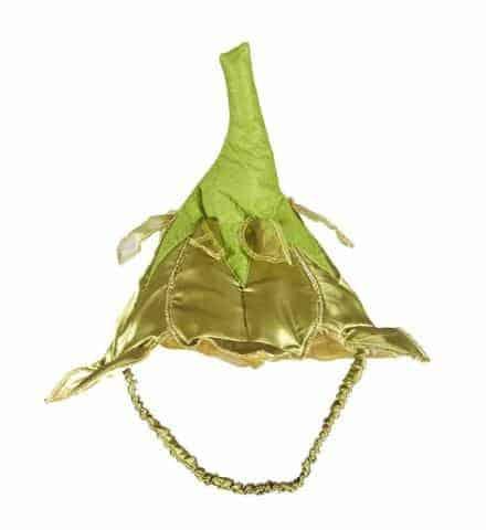 Chapeau de fée vert