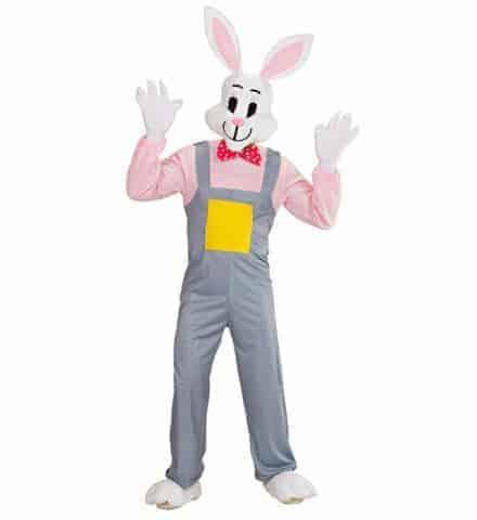 Mascotte de lapin fun